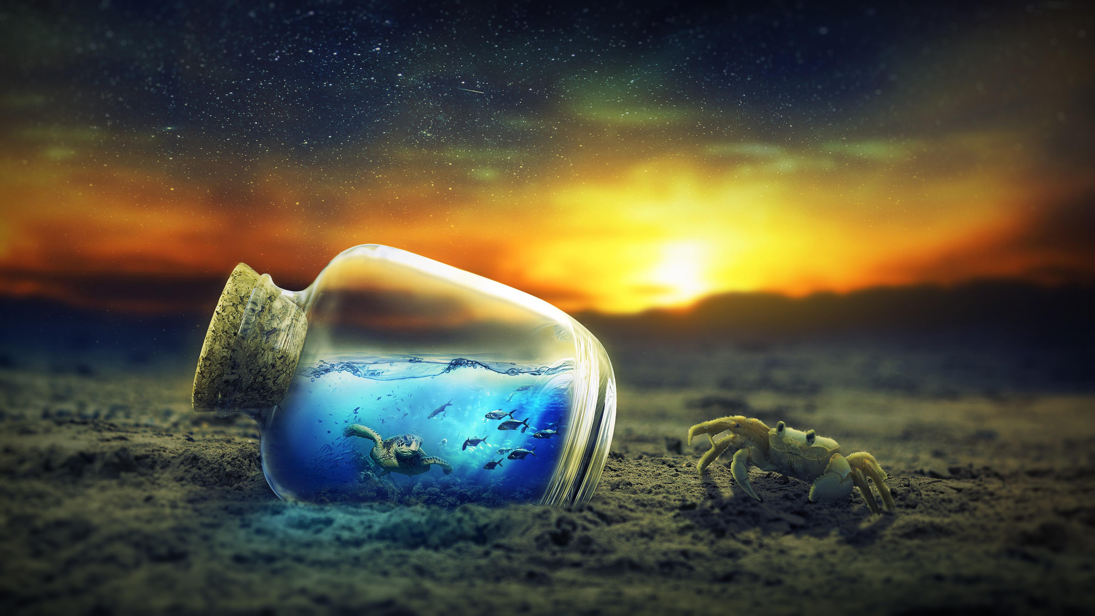 Фэнтези, краб, бутылка, черепахи, обои hd
