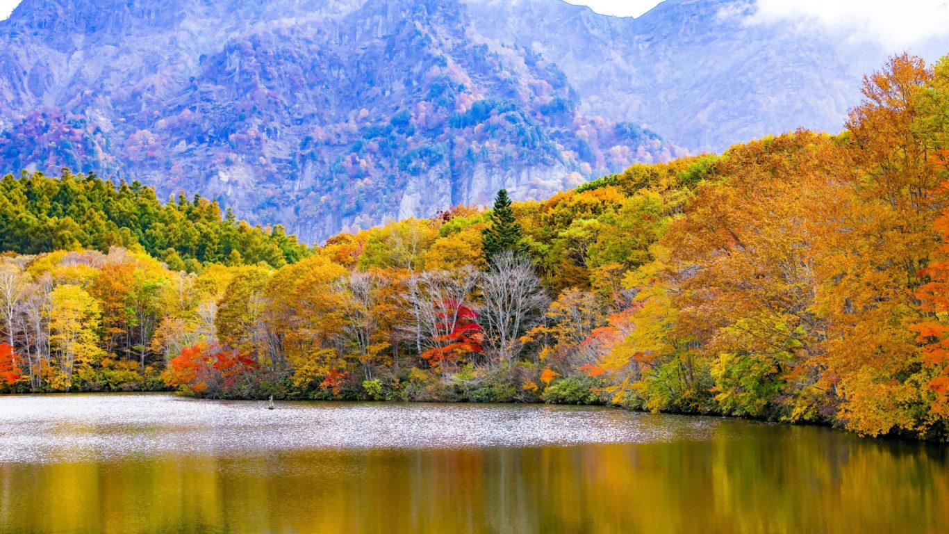осень, природа, лес, озеро, full hd обои