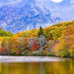 Осенний лес возле озера