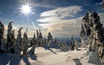 Зимние пейзажи обои hd, пейзаж