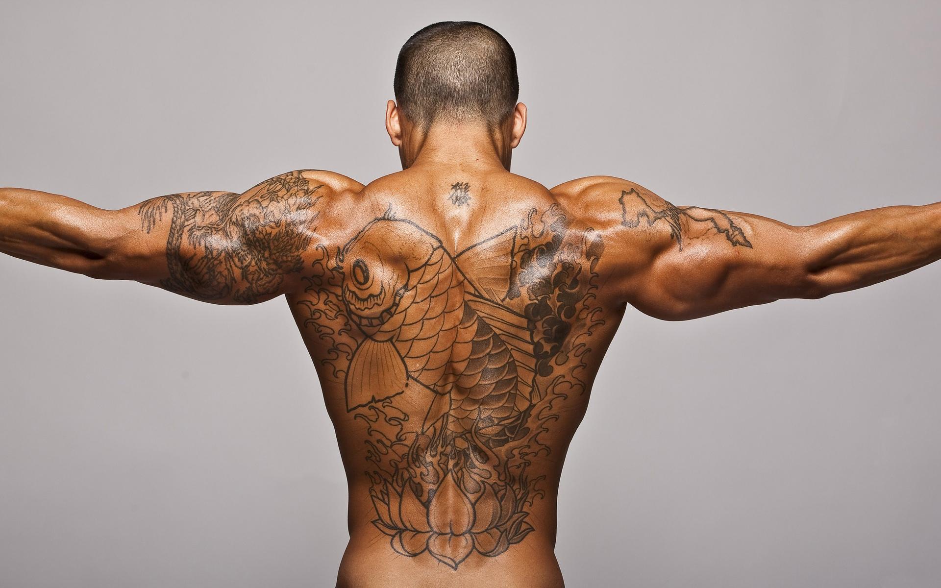 мужчина с тату на спине, татуировки, парень, hd обои