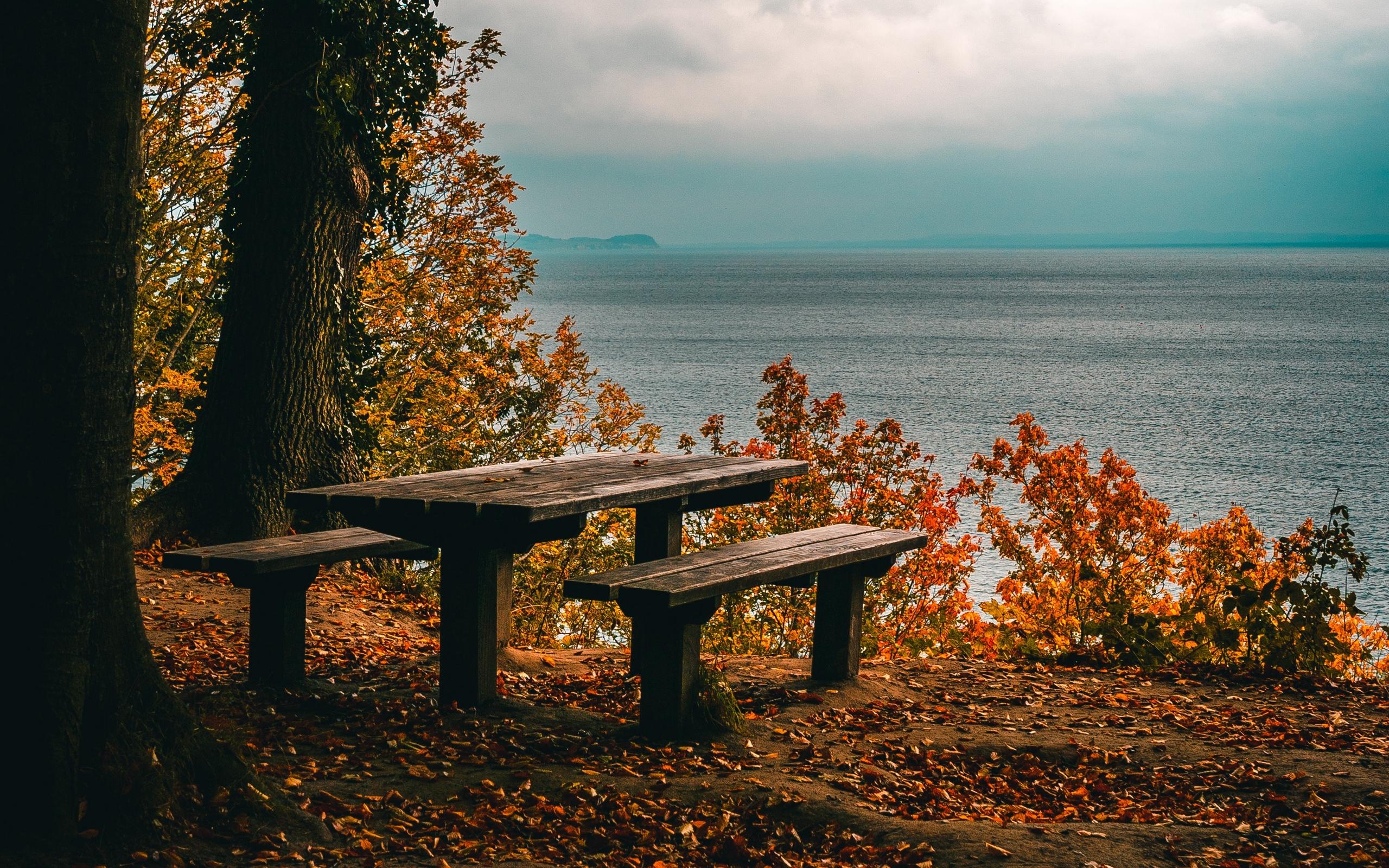осень, берег, море, скамейка, широкоформатные обои, природа