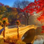 Мост над рекой в осеннем лесу