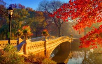 Осень, мост, река, осенний лес, парк, природа, обои hd