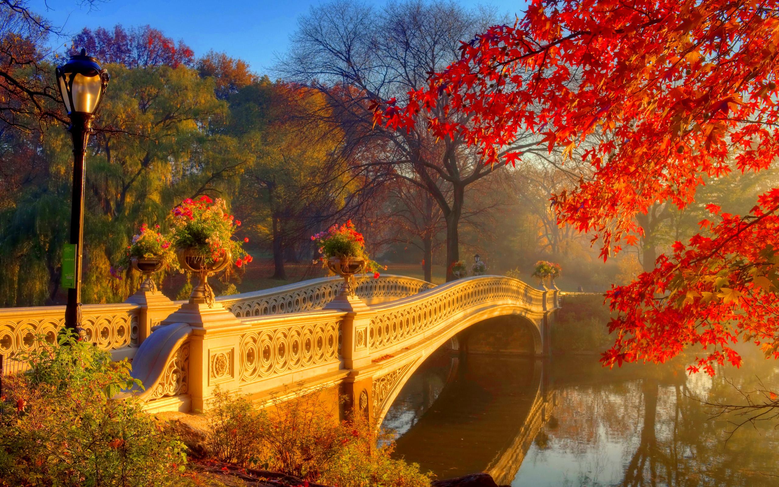 Картинки на рабочий стол осень природа