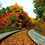 Железная дорога в лесу осенью