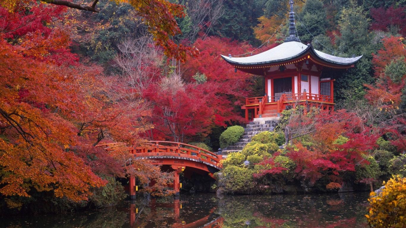 природа, японский сад, 4к обои