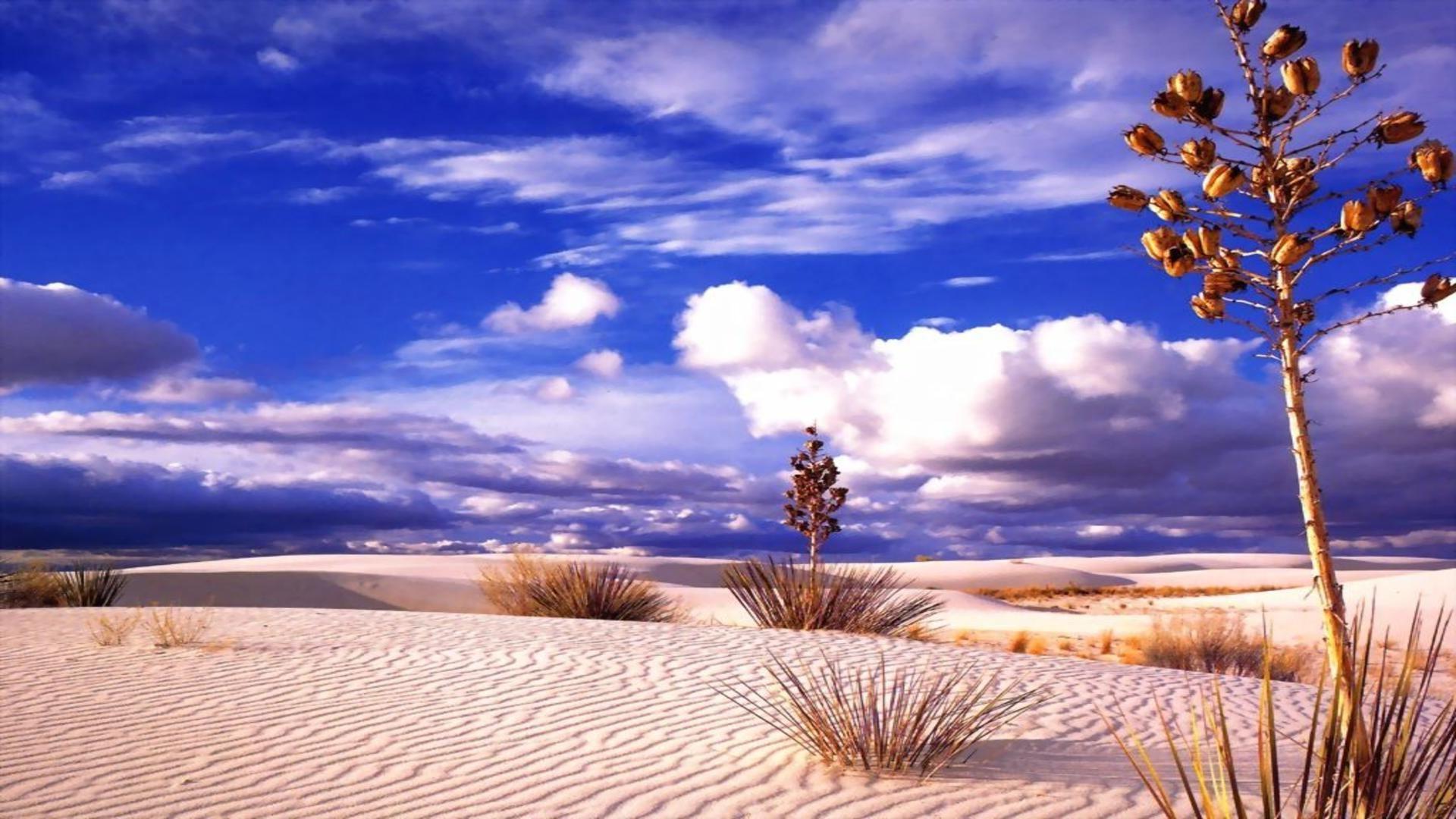 природа, пустыня, HD