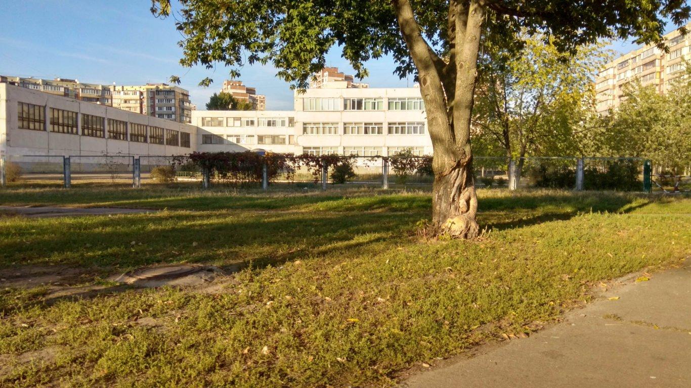 Школа, парк, солнце, 4к обои