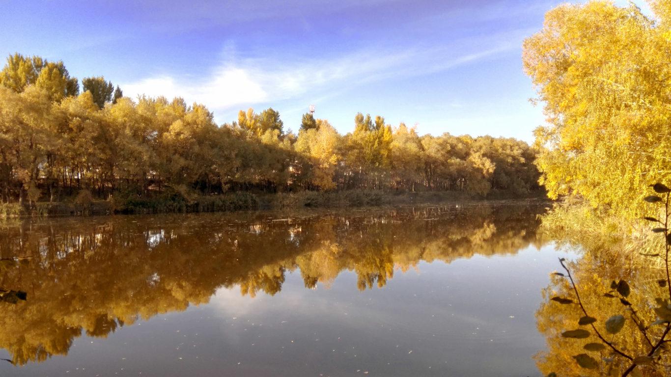 природа, осень, спокойное озеро осенью