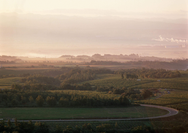 Туманное утро в селе, природа, сельской пейзаж, fog, morning, nature, hd обои