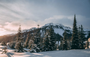 фото зимний пейзаж, снег, зима, горы, лес, 5k обои