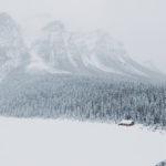 Лес у подножья горы зимой