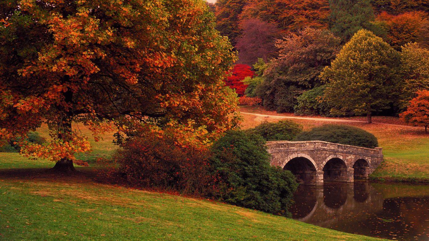 осень, маленький мостик, парк, 4k
