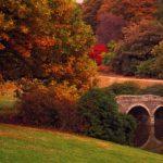 Маленький мостик в осеннем парке