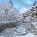 Река зимой в лесу