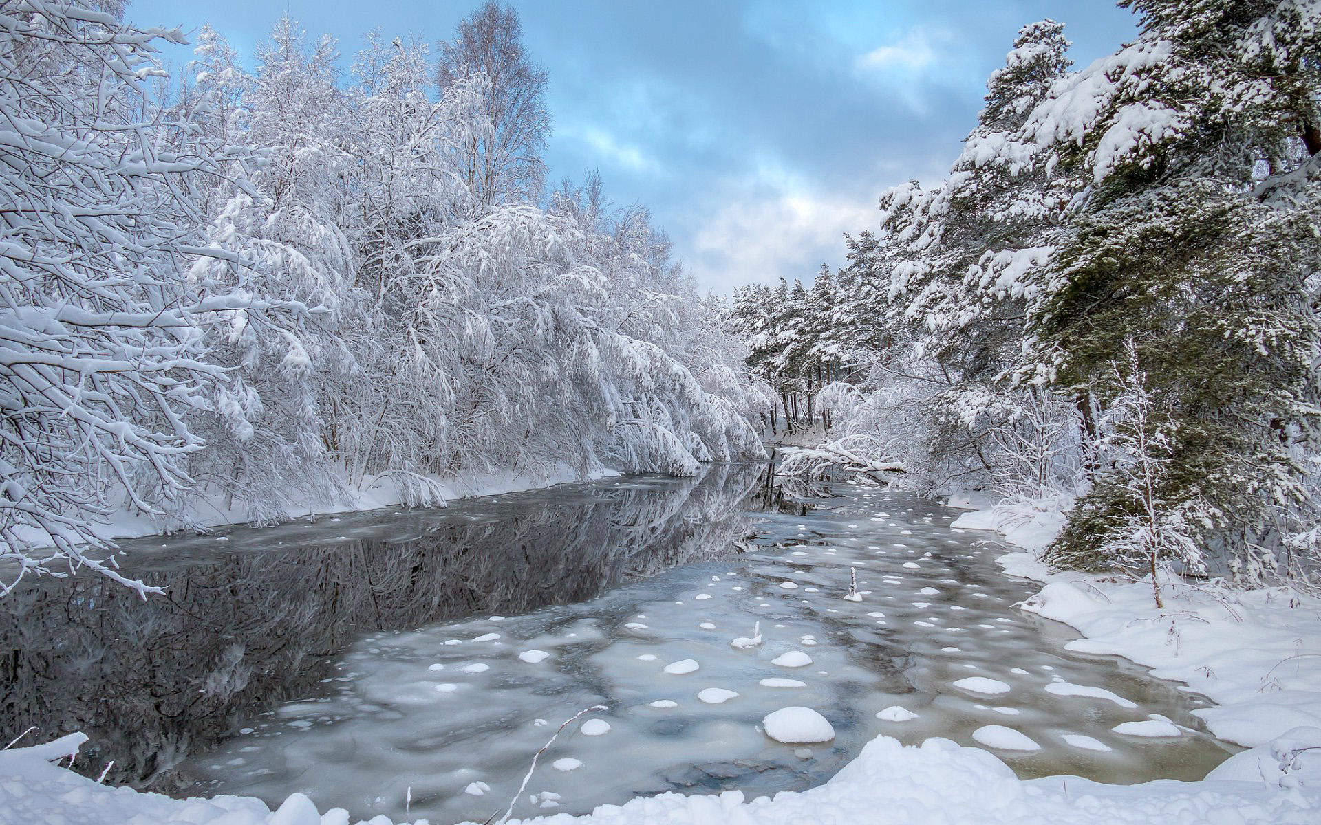 зима, лес, река, снег, деревья, природа, hd
