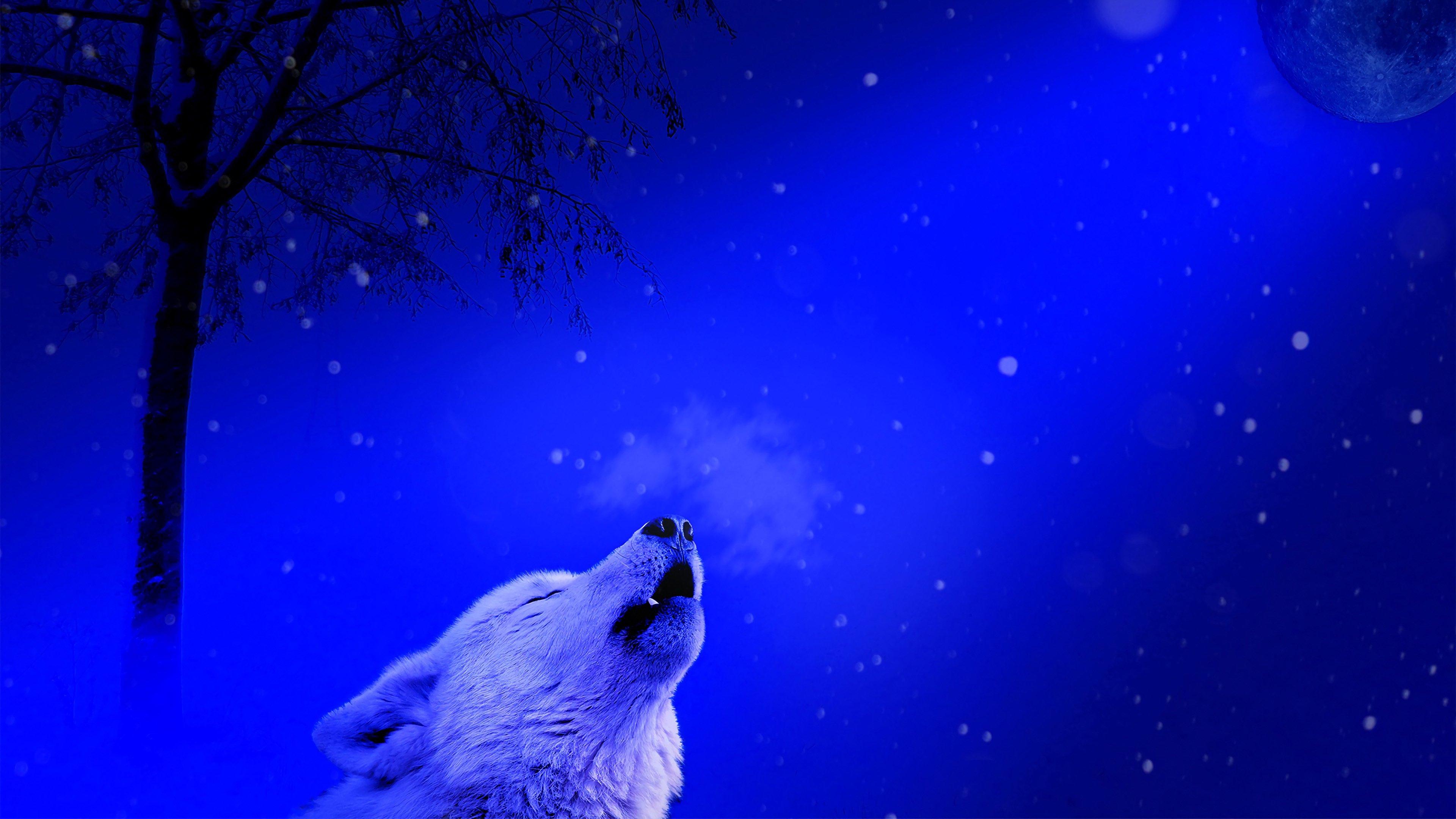 волк, одиночество, вой, луна, 4k обои