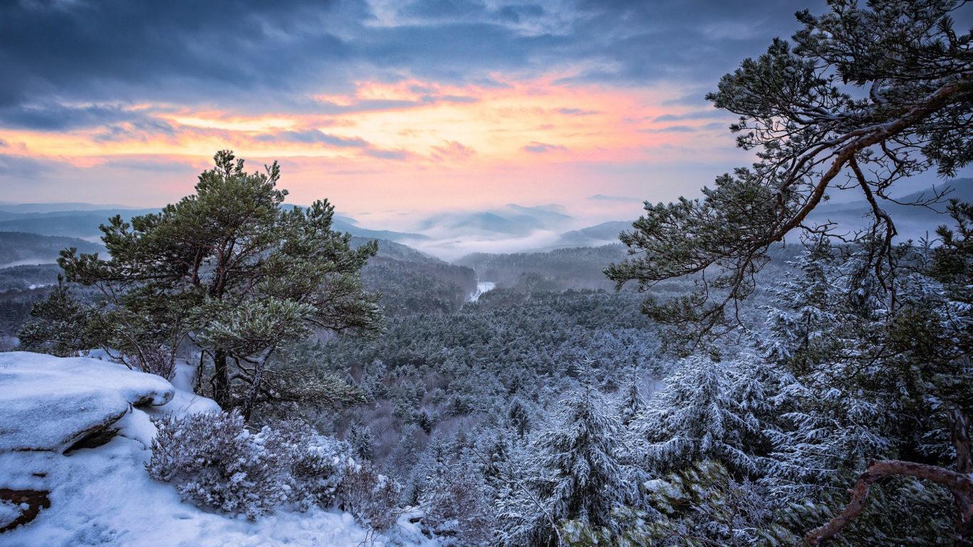 зима, лес, снег, горы, небо, облака, снег, горы, ветки, природа, обрыв, холмы, утро, дымка, сосны, хвоя