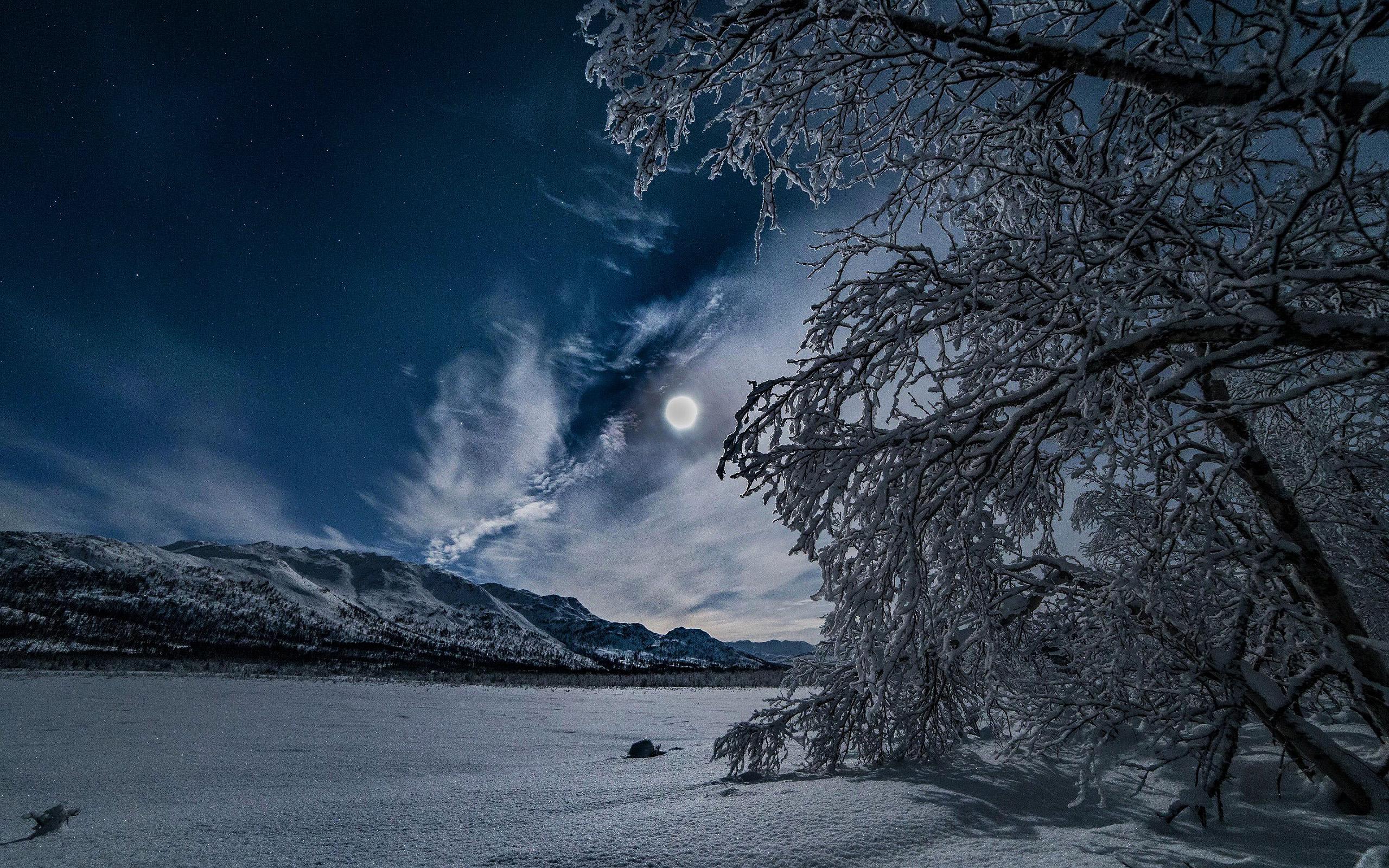 зима, ночь, снег, луна, зимняя ночь