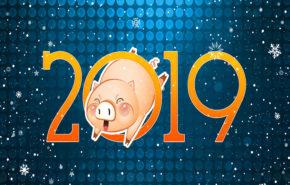 год свиньи, Новый Год 2019
