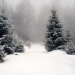Туман зимой