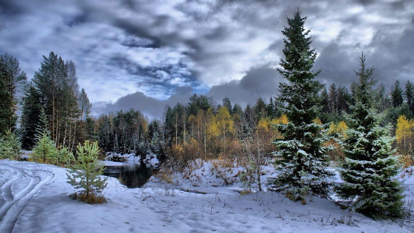 обои зима, снег, лес, природа, деревья, заставки hd