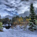 Красивый пейзаж зимы