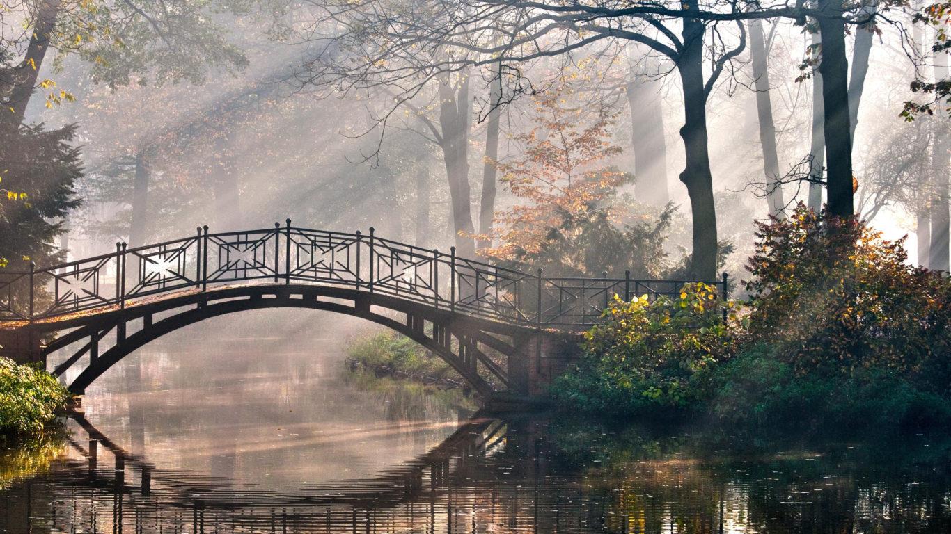 мост, солнце, лучи, свет, утро, река, парк, сказка, 4k обои