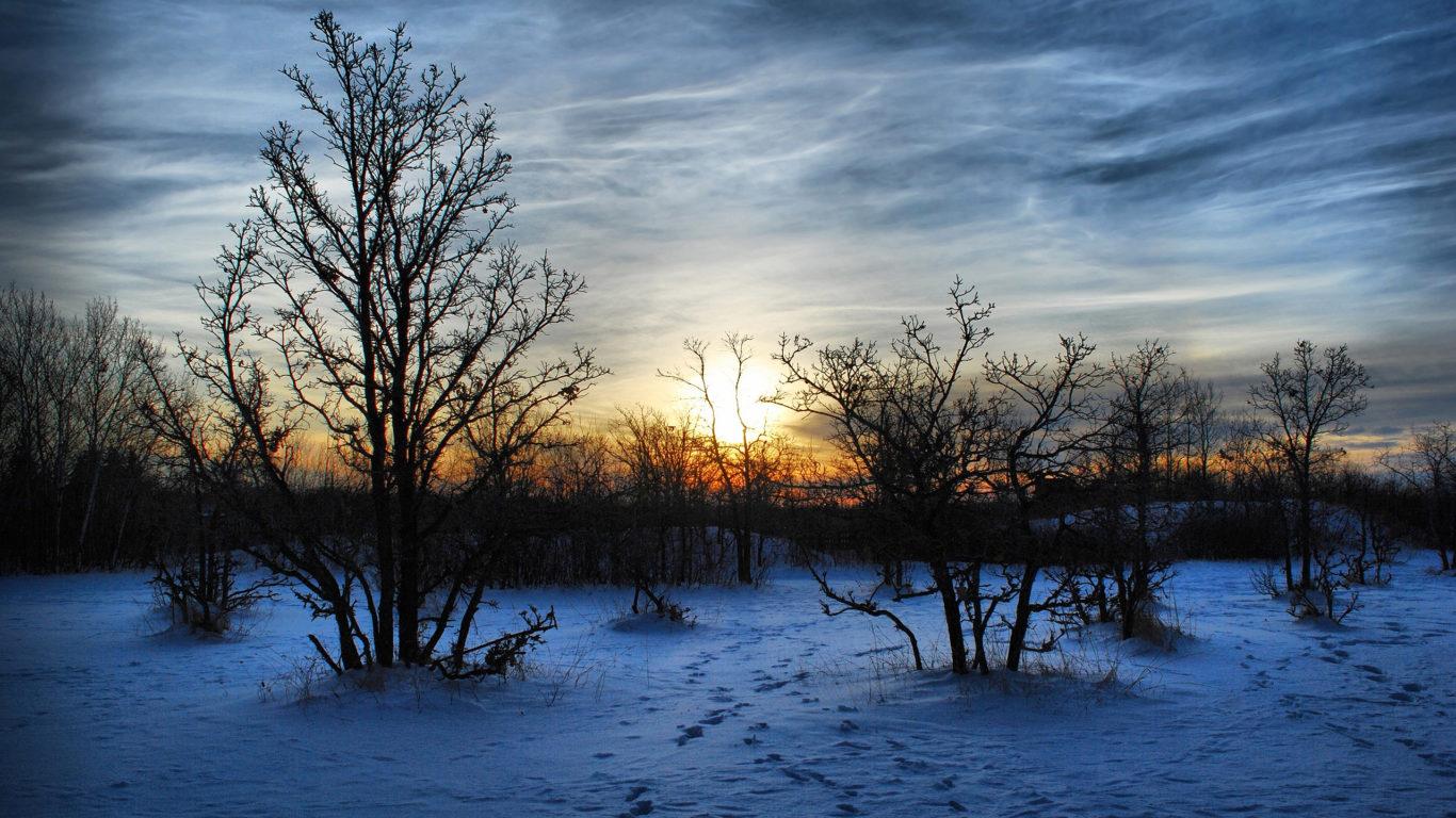 зима, закат, снег, обои hd