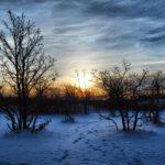 Пейзаж зимы на закате