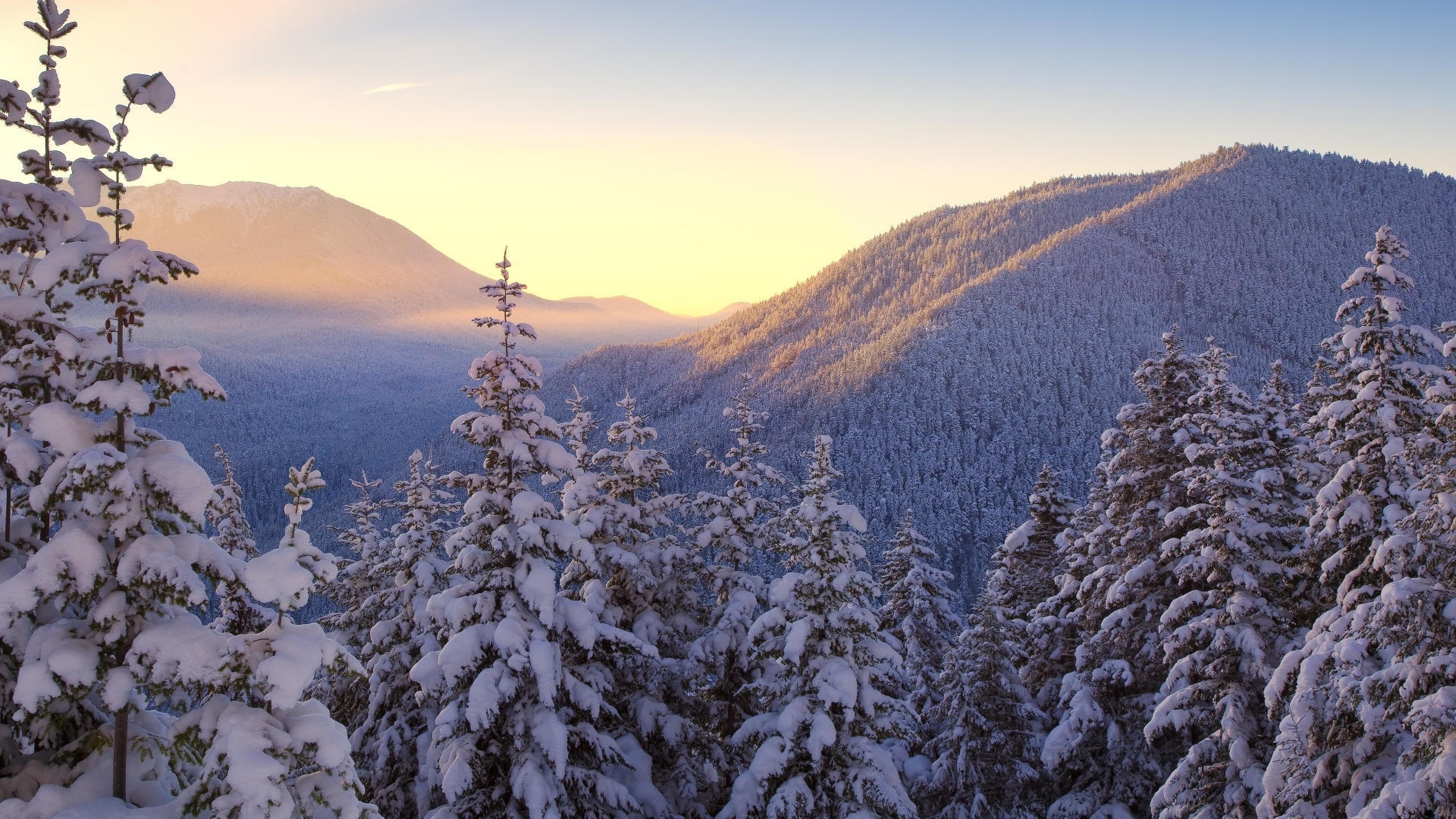 картинки зима мороз, ели, горы, закат, снег, природа, 4к обои