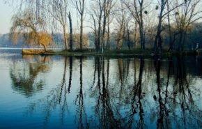 весна, парк, деревья, вода, озеро